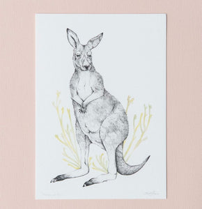 Eastern Grey Kangaroo artwork by Australian artist Emma Morgan