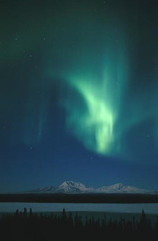 Northern Lights Environmental Essence Alaskan Essences Wonderworks