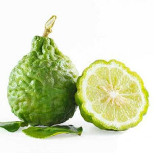 Bergamot Essential Oil (15ml)