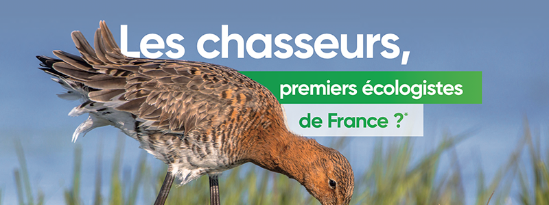 nemrod-chasseur-ecologiste-france