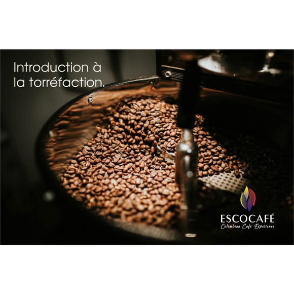 Introduction to roasting course