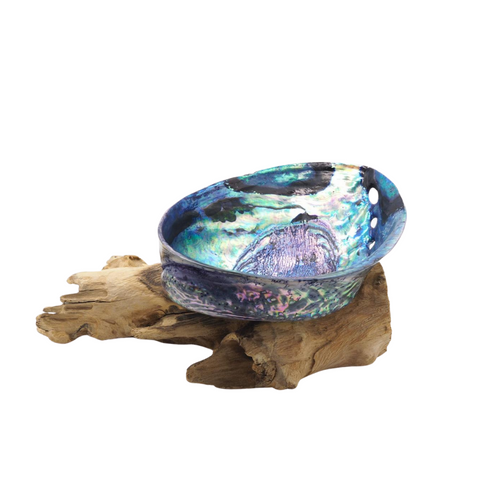 Large Abalone Ceremony Shell with Optional Stand for Smudging Sage, Palo Santo or Crystal Cleansing