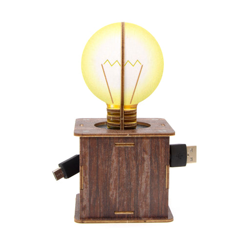 [JIGZLE Wooden Puzzle]<br>Lightbulb Cable Box