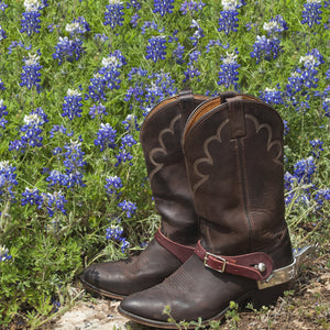 Air Fresheners - leather boots in a field of bluebonnets
