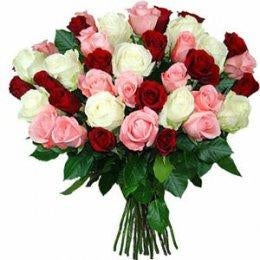 send online Red, White, Pink Roses Bunch  - Expressluv.in