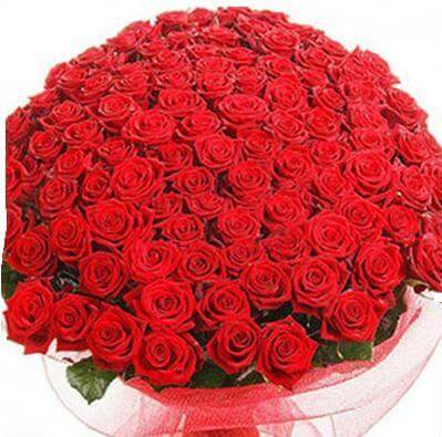 Giant 100 Roses Bunch