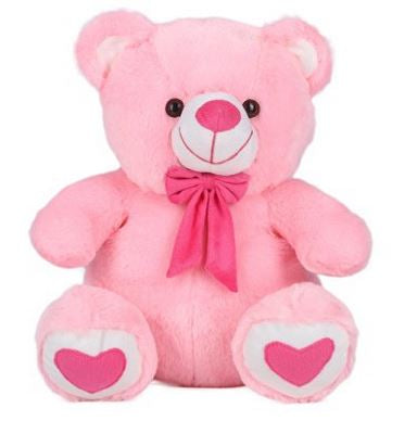 Teddy Bear Pink 45cm  - Expressluv.in