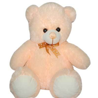 Cool Pink Teddy Bear 30cm  - Expressluv.in