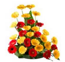 Red n Yellow Jelvera Flower Basket  - Expressluv.in