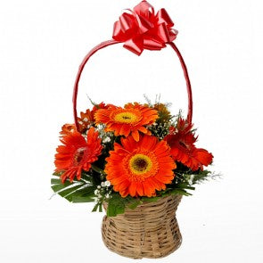 Orange Gerbera Flowers Basket  - Expressluv.in