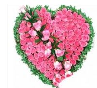 Heartly Wishes with Pink Roses, heart shape pink roses online - Expressluv.in