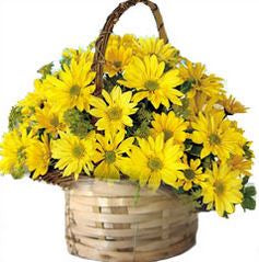 a Basket full of beautiful Yellow Flowers  - Expressluv.in