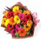 Colorful Gerberas, best design mix color flowers for girls