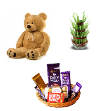 Teddy, Chocolate Set and Lucky Plant