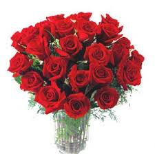 24 - Two DOzen beautiful red roses bunch with a transparent vase  - Expressluv.in