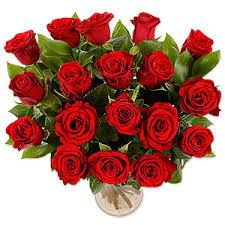 One and half dozen red roses - big Stem  - Expressluv.in