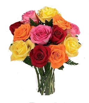 12 Mixed Roses to USA mixed rose of 3 red color, 3 pink color, 3 orange color and 3 yellow roses in a bouquet order now  - Expressluv.in