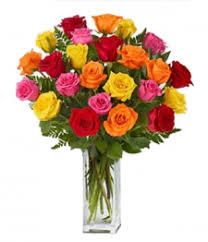 24 beautiful Mis Roses with different color with 6 red, 6 orange, 6 pink and 6 yellow roses  - Expressluv.in
