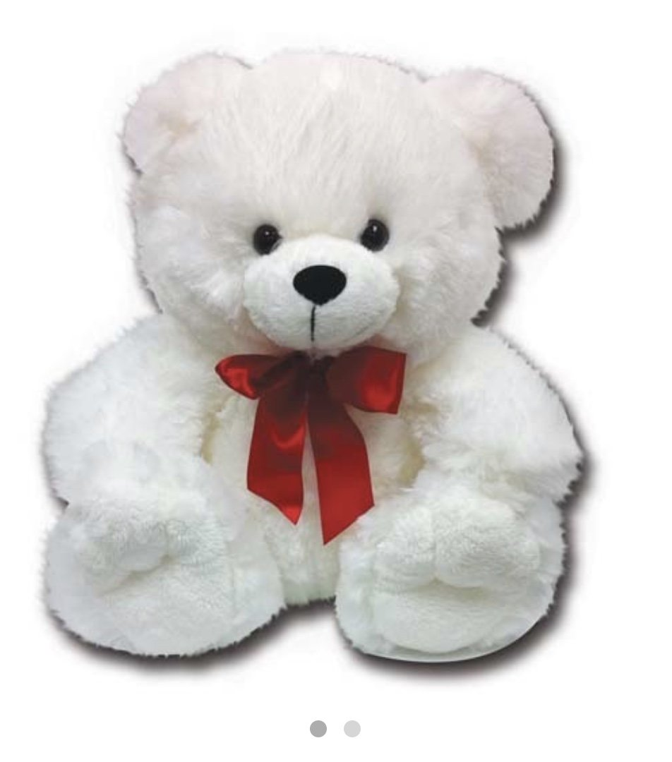 White Teddy with Red tie