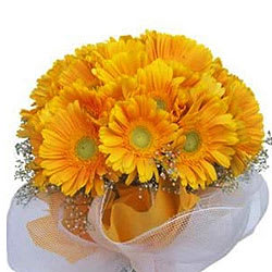 Artful and beautiful Yellow Gerberas flower Bouquet with beautiful wrapping - Expressluv.in