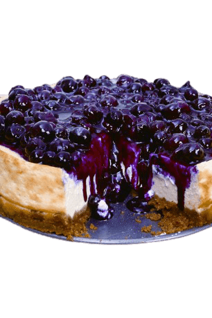 Premium Blueberry Cheese Cake 1kg