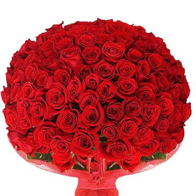 Beautiful Roses for Valentines Day - Red Roses Huge Bouquet