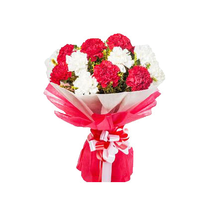 order online Red & White Carnations  - Expressluv.in | Free Shipping