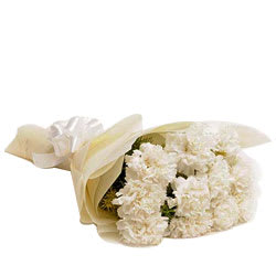 White Carnations  - Expressluv.in