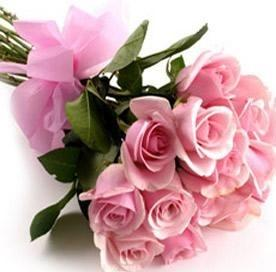 Pink Roses Bunch - 12  - Expressluv.in