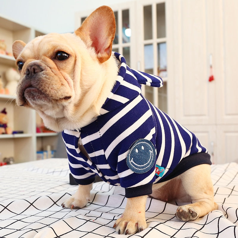 Matey's dog shirt - White and Blue Stripped hooded sweater Dog Clothes PUGYOU