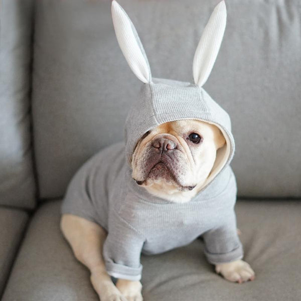 Rabbit Hoodie for Dogs-Dog Clothes-Pug You