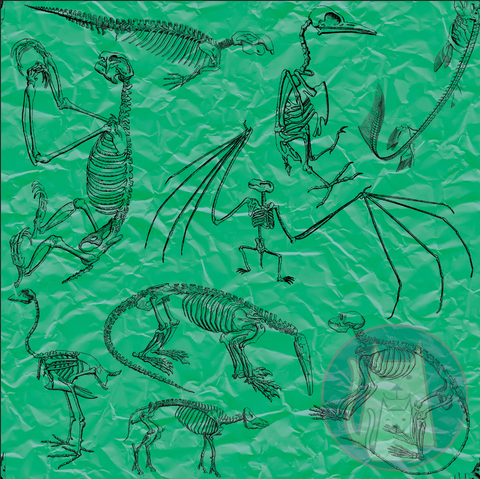 ***Green Mammal Skeletons