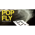 Pop Fly by Bizau Cristian video DOWNLOAD