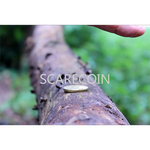 Scare Coin by Arnel Renegado - Video DOWNLOAD