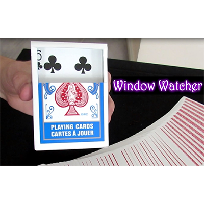 Window Watcher by Aaron Plener - Video DOWNLOAD