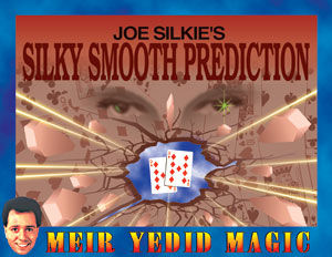 Silky Smooth Prediction by Meir Yedid