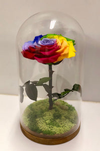 You're My Rainbow - Lady Flo'rae - Unique gift handcrafted with preserved flowers