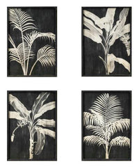Premium Framed Glass Artwork - Monochrome Fern & Palm - Set of 4