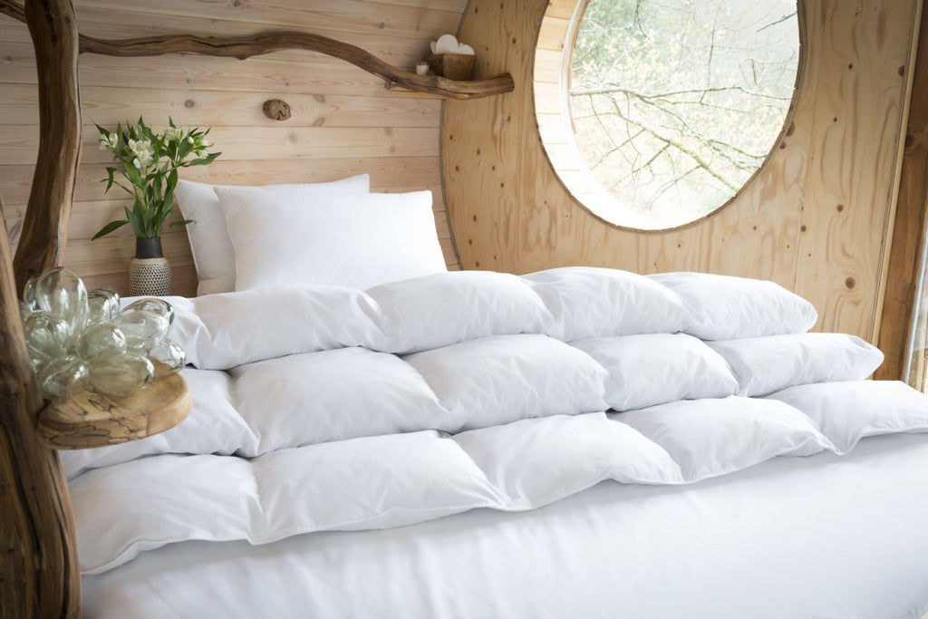 Natural Goose Down Surround Pillow