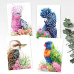 Greeting Cards Value Pack - Birds Collection