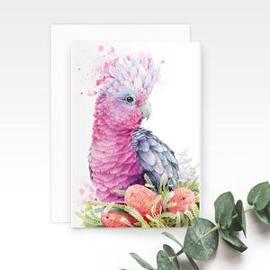 Pink Galah Greeting Card