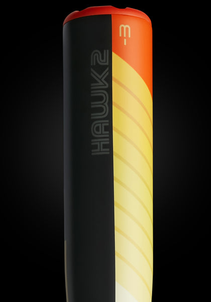 The HAWK2 Ltd. Edition Fire Tail BBCOR Metal Baseball Bat, [prouduct_type], [Warstic]
