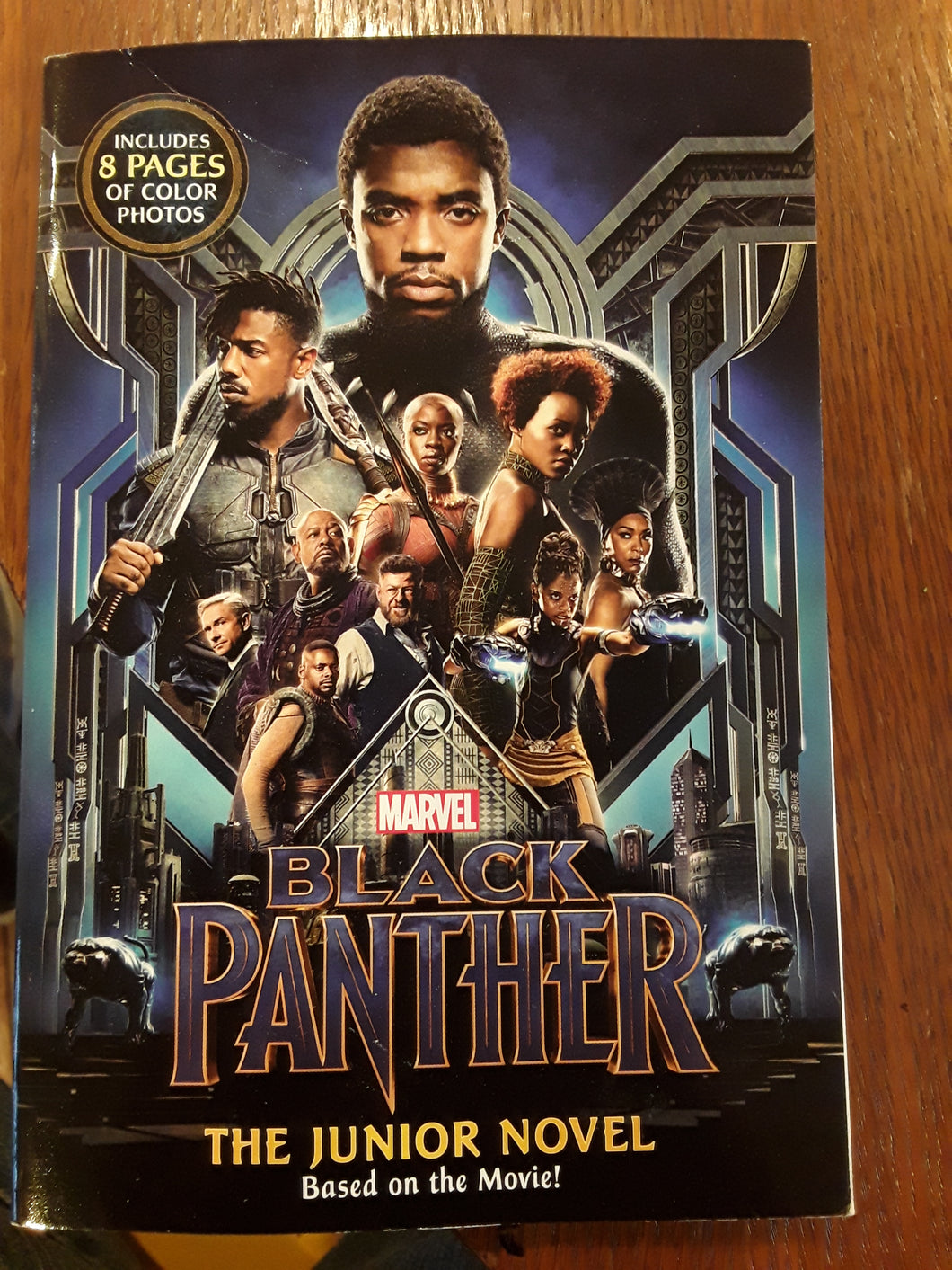 Black Panther The Junior Novel
