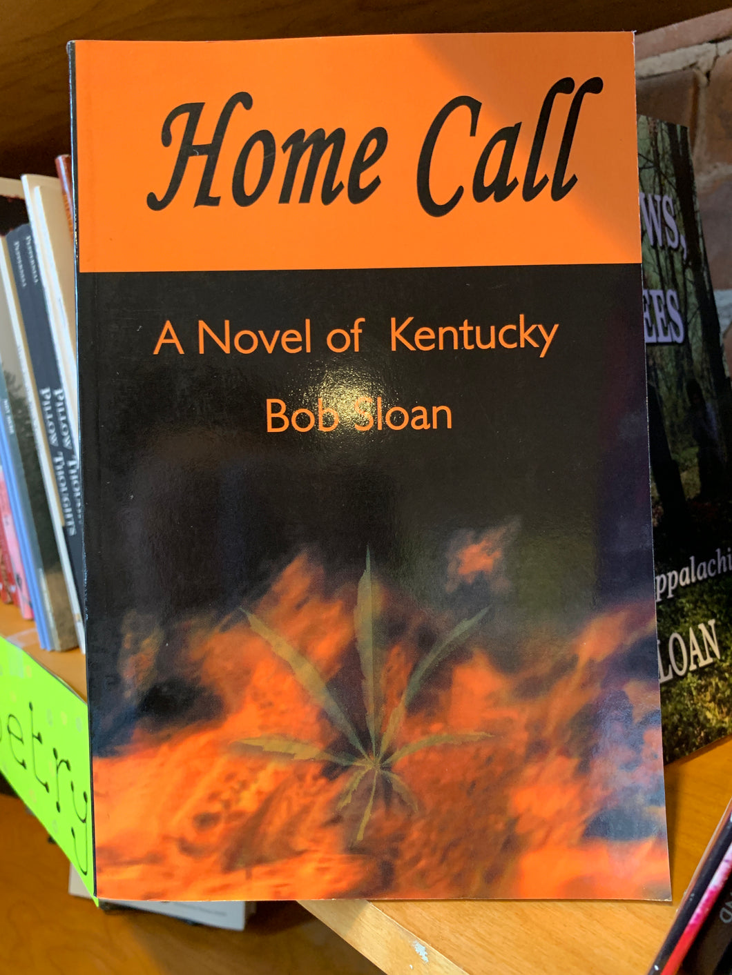 Home call a novel of Kentucky