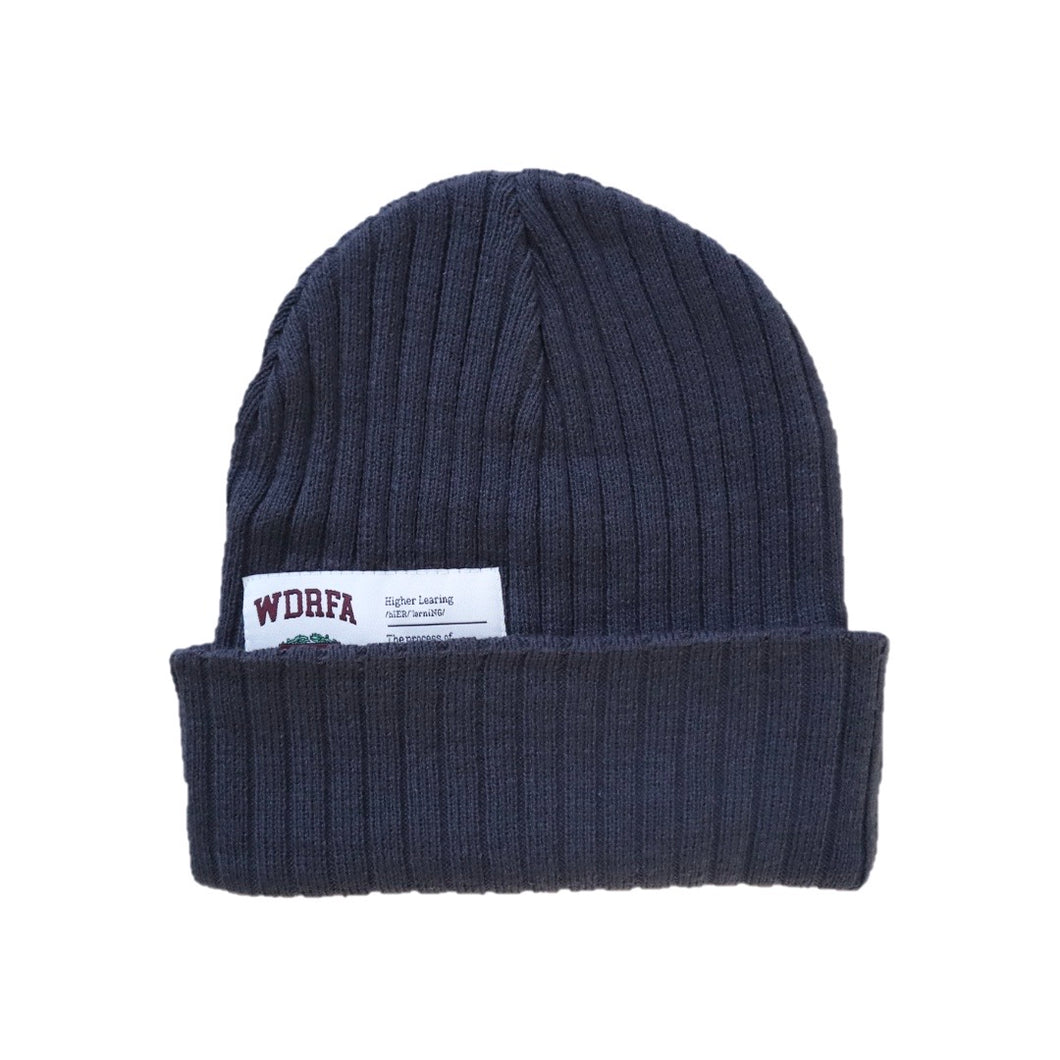 HIGHER LEARNING BEANIE - GREY