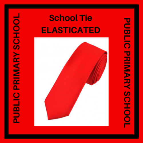PUBLIC PRIMARY SCHOOL TIE ELASTICATED