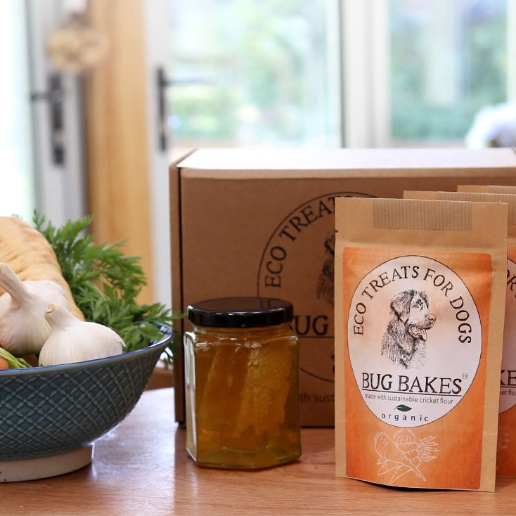 Eco Treats for Dogs by Bug Bakes