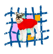 Load image into Gallery viewer, waffle textured knitted pet jumper