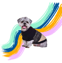 Load image into Gallery viewer, Donegal black and brown pet jumper