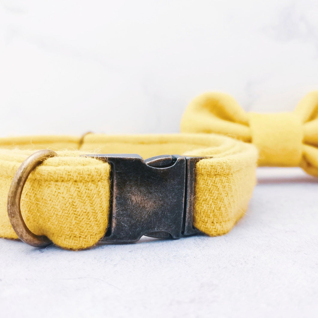 Sunshine Yellow Bowtie and Collar Set